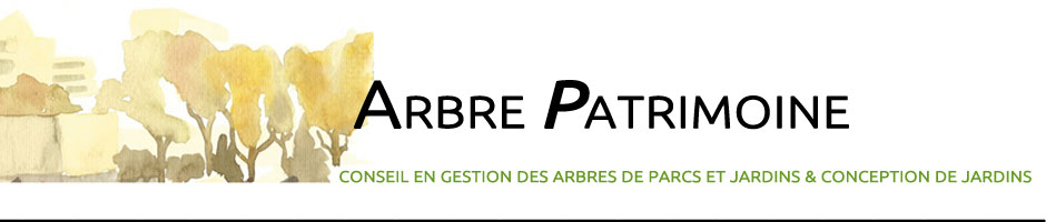 ARBRE PATRIMOINE | Conseils en arboriculture ornementale et gestion des arbres – Foresterie urbaine